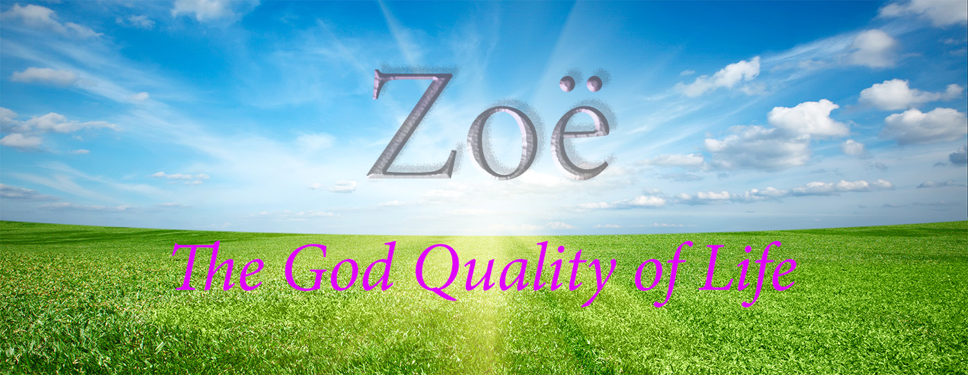 zoe-the-god-quality-of-life-2-web